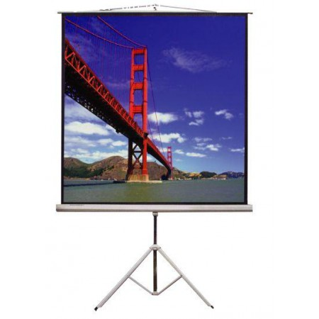 "VERTEX Tripod Projector Screen 50""x50""MW"